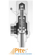 series-1890-pressure-relief-valves-farris-engineering-vietnam.png