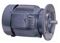 three-phase-totally-enclosed-fan-cooled-flange-type-higen-motor-vietnam.png